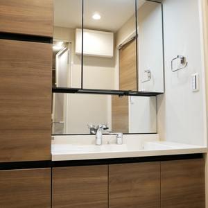ライオンズマンション錦糸町第2(9階,3680万円)の化粧室・脱衣所・洗面室