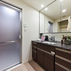 アクシア青山(13階,)の化粧室・脱衣所・洗面室