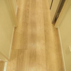 ヴィラロイヤル代々木(3階,)のお部屋の廊下
