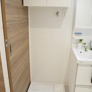 日興パレス雷門(8階,)の化粧室・脱衣所・洗面室