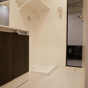 日興パレス雷門(7階,)の化粧室・脱衣所・洗面室