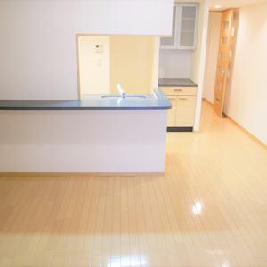シティハウス浅草ステーションコート(2階,3698万円)の居間(リビング・ダイニング・キッチン)