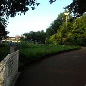 朝日クレスパリオ西落合の近くの公園・緑地