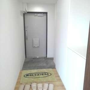 豊島ハイツ(5階,)のお部屋の玄関