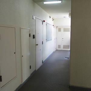 中野ダイヤハイツ(2階,)のフロア廊下(エレベーター降りてからお部屋まで)