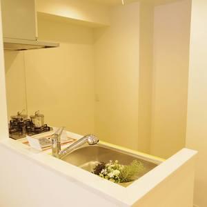 中野ダイヤハイツ(2階,)のキッチン