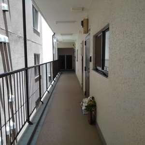 ワコー高田マンション(3階,)のフロア廊下(エレベーター降りてからお部屋まで)