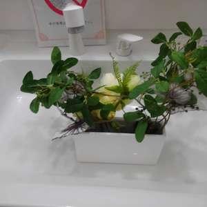 ワコー高田マンション(3階,)の化粧室・脱衣所・洗面室