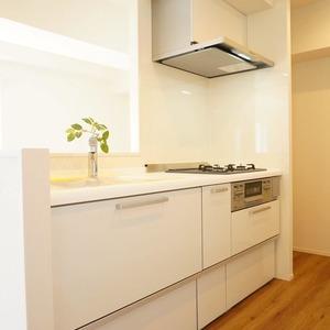 ネオハイツ田町(7階,3890万円)のキッチン