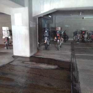 シャンボール第2目白の駐輪場