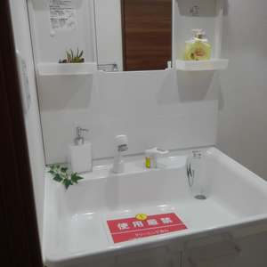 シャンボール第2目白(2階,)の化粧室・脱衣所・洗面室