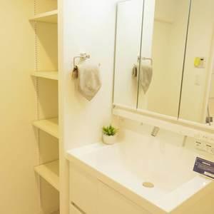 中野ダイヤハイツ(2階,)の化粧室・脱衣所・洗面室