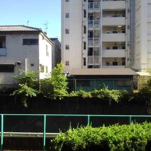 ライオンズマンション下落合(1階,)のお部屋からの眺望