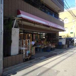 ライオンズマンション下落合の周辺の食品スーパー、コンビニなどのお買い物