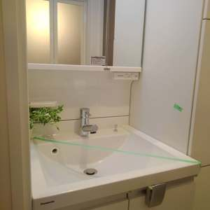 ダイアパレス上落合(2階,)の化粧室・脱衣所・洗面室