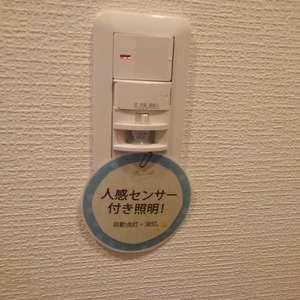 ダイアパレス上落合(2階,)のお部屋の玄関