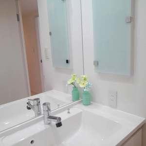 エクセレント新井薬師前(2階,)の化粧室・脱衣所・洗面室