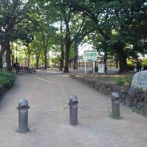 エクセレント新井薬師前の近くの公園・緑地