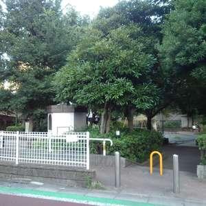 ブライズ新宿中井の近くの公園・緑地