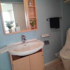 ブライズ新宿中井(5階,2898万円)の化粧室・脱衣所・洗面室