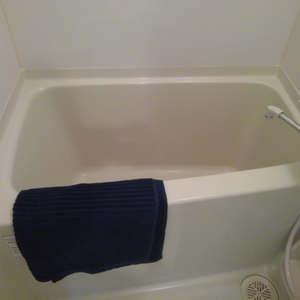 ブライズ新宿中井(5階,2898万円)の浴室・お風呂