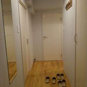 東池袋ハイツ弐番館(13階,)のお部屋の玄関