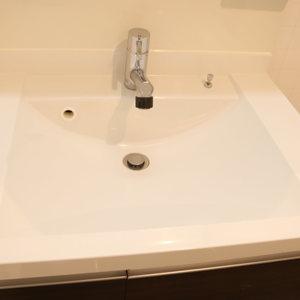ライオンズマンション護国寺第3(2階,3380万円)の化粧室・脱衣所・洗面室