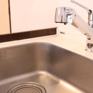 ライオンズマンション護国寺第3(2階,3380万円)のキッチン