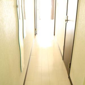 ハセガワハイツ(5階,2080万円)のお部屋の廊下