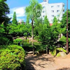 スカーラ中野新井の近くの公園・緑地