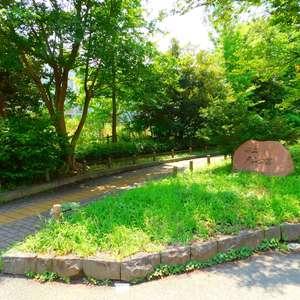 パシフィック西早稲田の近くの公園・緑地