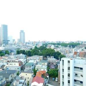 ステージファースト目白(12階,)のお部屋からの眺望