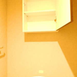 秀和大山レジデンス(2階,)のトイレ