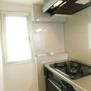 レジェンド大山(2階,)のキッチン