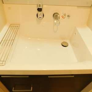 レジェンド大山(2階,)の化粧室・脱衣所・洗面室