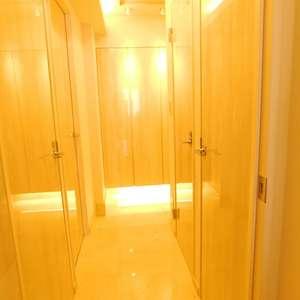 ナイスアーバン池袋山手通り(12階,)のお部屋の廊下