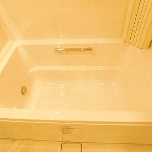 ナイスアーバン池袋山手通り(12階,)の浴室・お風呂