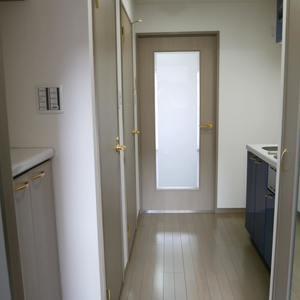 菱和パレス秋葉原駅前(3階,)のお部屋の廊下