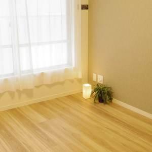 パシフィック松が丘(3階,)の洋室