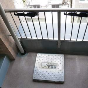 ライオンズマンション日本橋浜町第2(9階,5480万円)のバルコニー