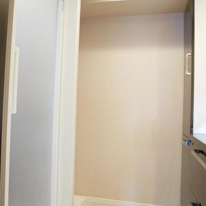 ライオンズマンション日本橋浜町第2(9階,5480万円)の化粧室・脱衣所・洗面室