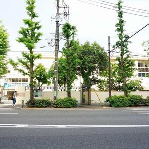 第8宮庭マンションの保育園、幼稚園、学校