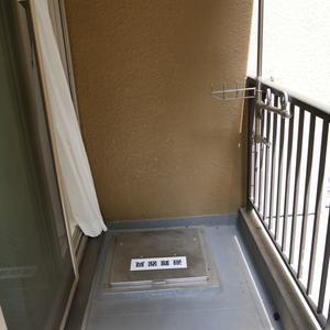 安田小網町マンション(2階,2980万円)のバルコニー