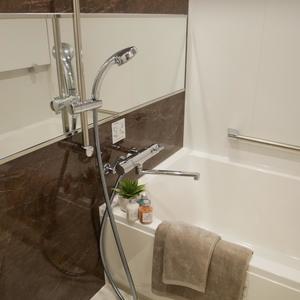 パレドール日本橋(8階,)の浴室・お風呂