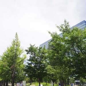 中野ハイネスコーポの近くの公園・緑地