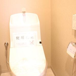 グランディ市谷柳町(4階,)のトイレ