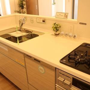 牛込ハイマンション(11階,)のキッチン