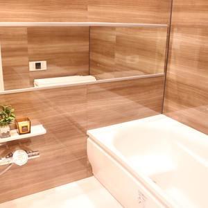 牛込ハイマンション(11階,)の浴室・お風呂