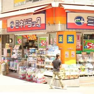 牛込ハイムの周辺の食品スーパー、コンビニなどのお買い物