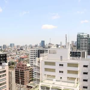 牛込ハイム(14階,)のお部屋からの眺望